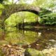 Dob Park Bridge