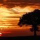 Sunrise 20-10-18