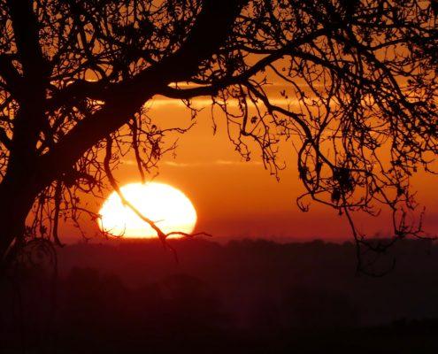 Sunrise 2-11-18