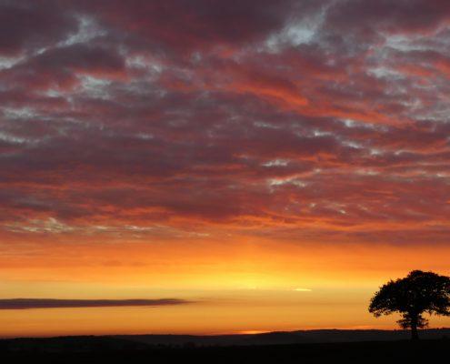 Sunrise  31-10-18