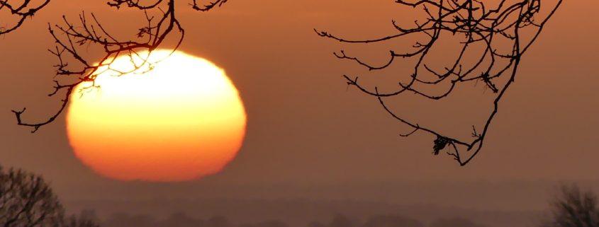 Sunrise 8-1-19