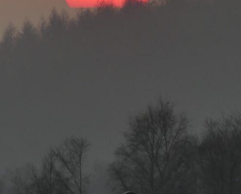 Lockdown sunrise