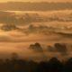 Wharfedale Mists